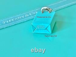 Tiffany & Co. Sterling Silver Shopping Bag Blue Enamel Charm Pendant Gift Box 2Y